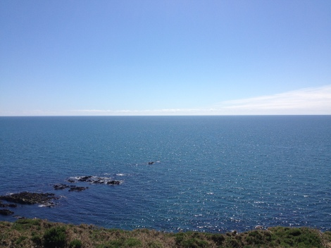 The stunning view offered by the Ballycotton cliff walk. Credit: Jess Leahy